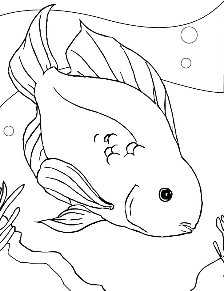 728x942 Best Fish Bowl Coloring Page Of Many Interesting Pages Colour