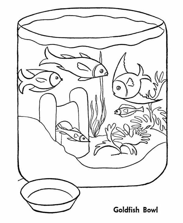 600x734 Goldfish In Fish Bowl Coloring Page