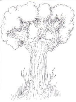 260x352 Pictures Good Drawing Sites,