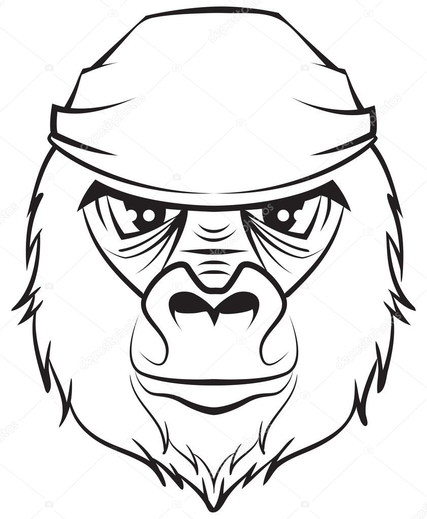 842x1023 Gorilla Head. Black And White Drawing Stock Vector Orensila