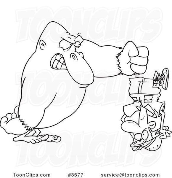 581x600 Cartoon Black And White Line Drawing Of A Gorilla Holding A Guy
