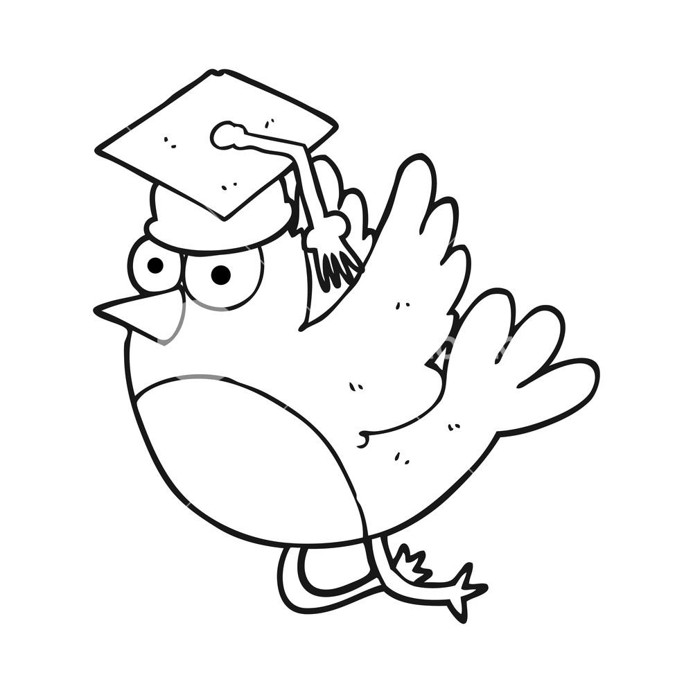 1000x1000 Freehand Drawn Black And White Cartoon Bird Wearing Graduation Cap