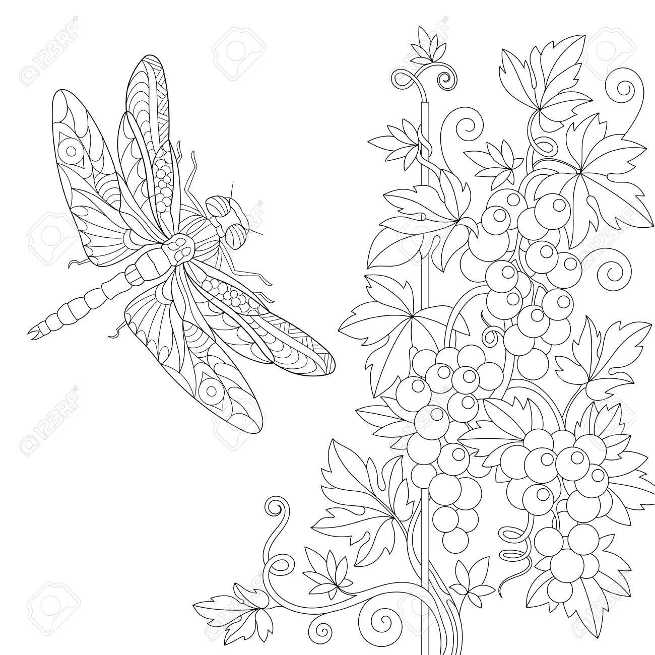 1300x1300 Coloring Page Of Dragonfly And Grape Vine Freehand Sketch Drawing