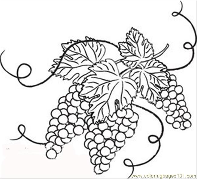 650x591 And White Grapes With Leaves Coloring Page