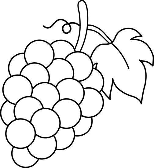504x550 Grapes Black And White Lineart