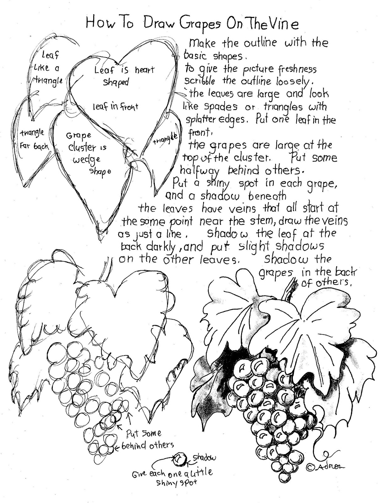 1204x1600 How To Draw Worksheets For The Young Artist How To Draw Grapes