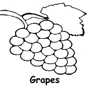 300x300 Showing Post Media For Cartoon Grape Outline Efcceabbaeaacoloring