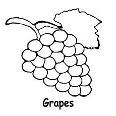 230x230 Grapes Coloring Page Preschool For Pretty Draw Image Printable