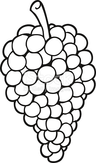 318x541 15 Black And White Picture Of Grapes Selection Black And White