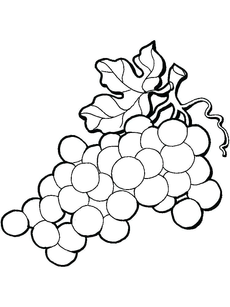 750x1000 Grapes Coloring Pages Grapes On Vine Coloring Page Fruits Pages
