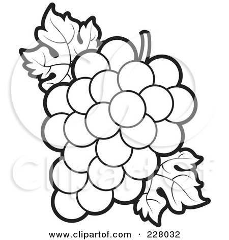 450x470 Picture Coloring Book Coloring Page Outlinebunch Grapes Leaves