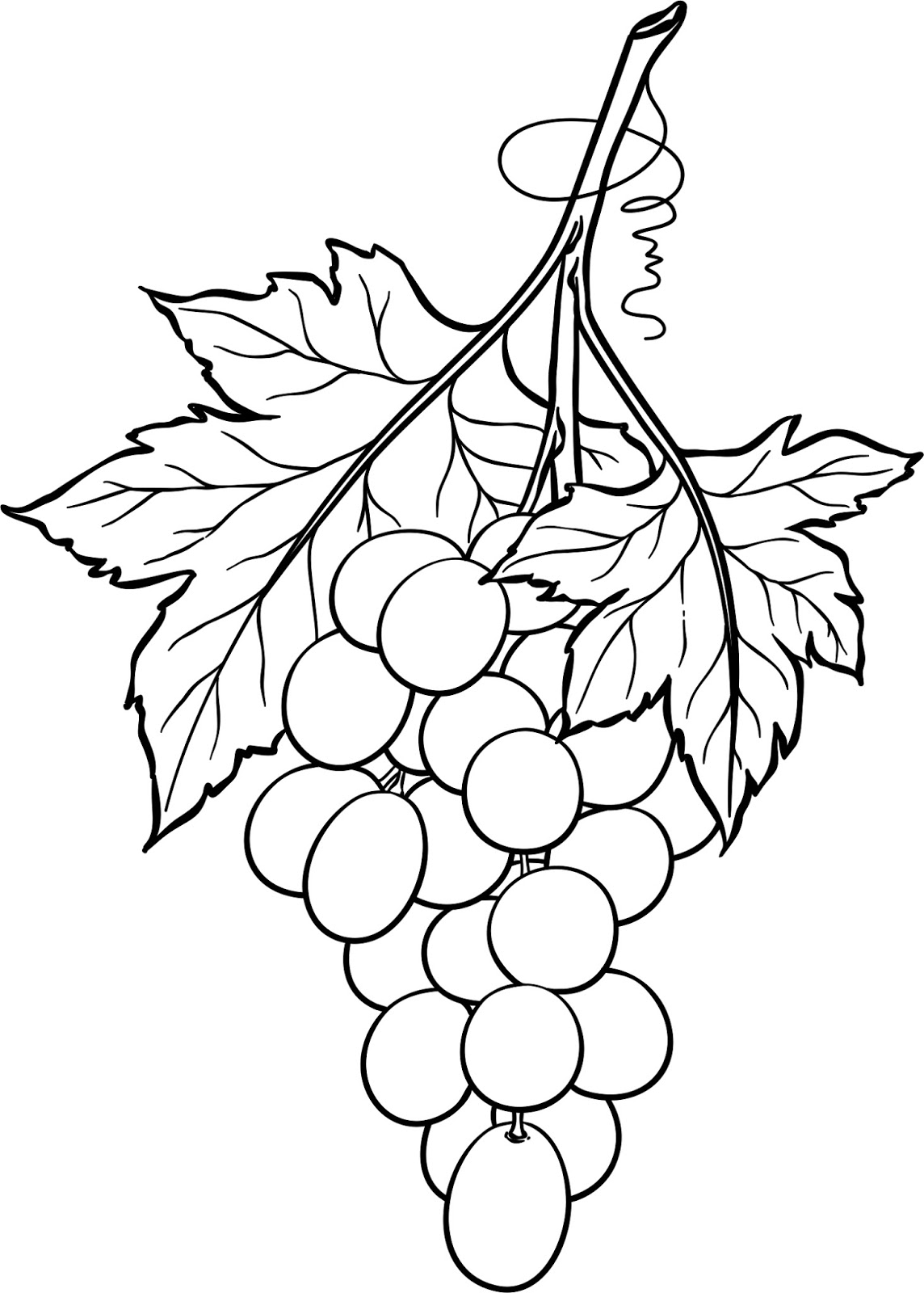 1144x1600 Beccy's Place Bunch Of Grapes