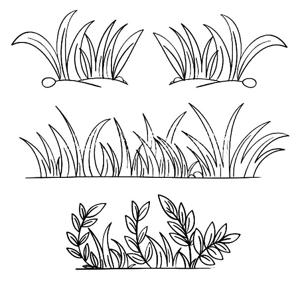 Line Drawing Grass : Grass drawing at getdrawings free for personal use
