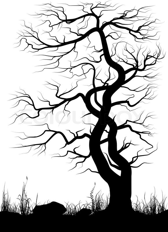 581x800 Silhouette Of Old Tree Grass Over White Background. Black