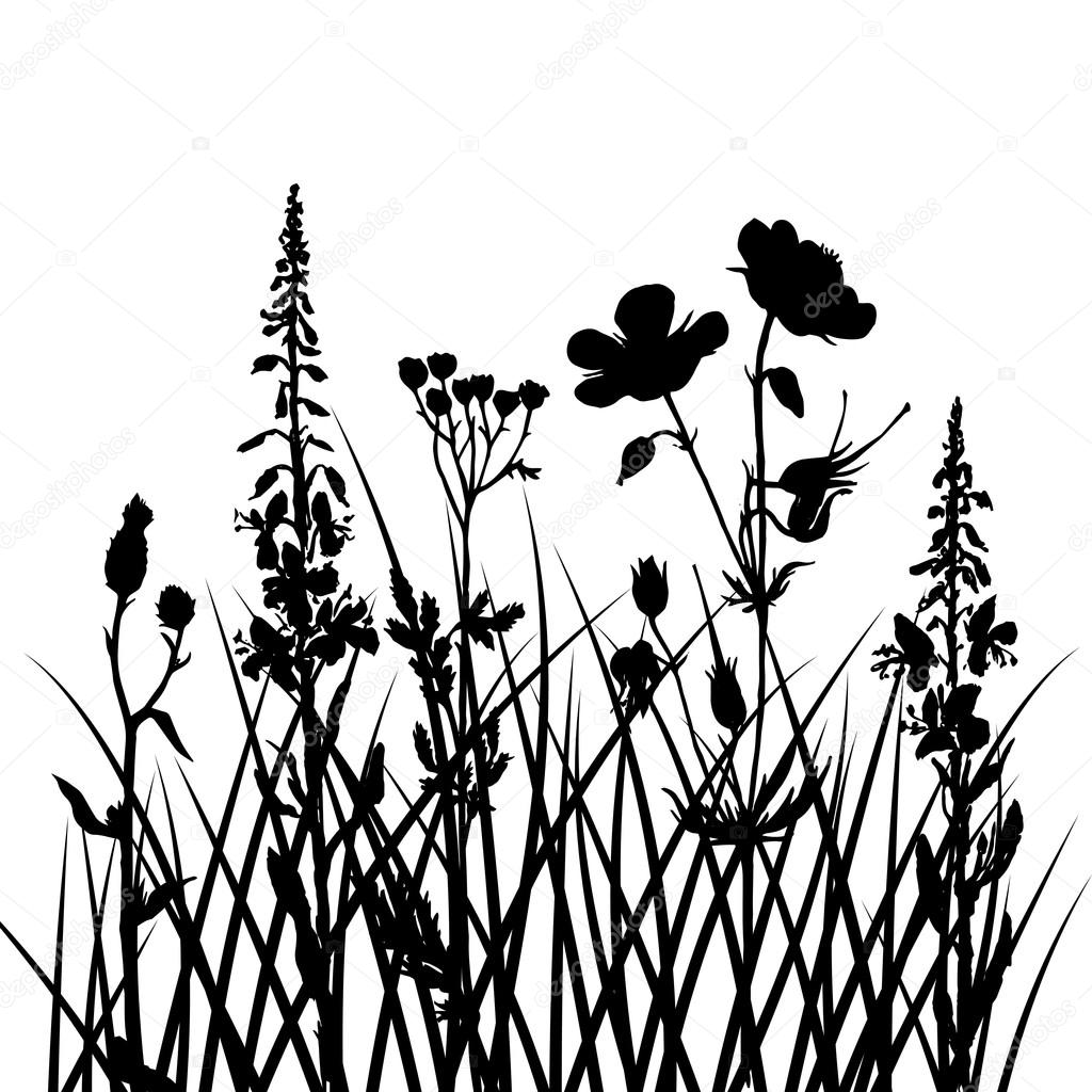 1024x1024 Vector Silhouettes Of Flowers And Grass Stock Vector