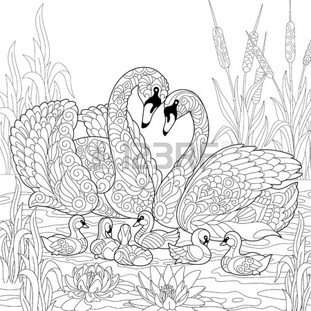450x450 Coloring Book Page Of Rural Landscape, Flower Meadow, Lake, Farm