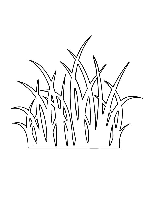 coloring pages with grass - photo#16