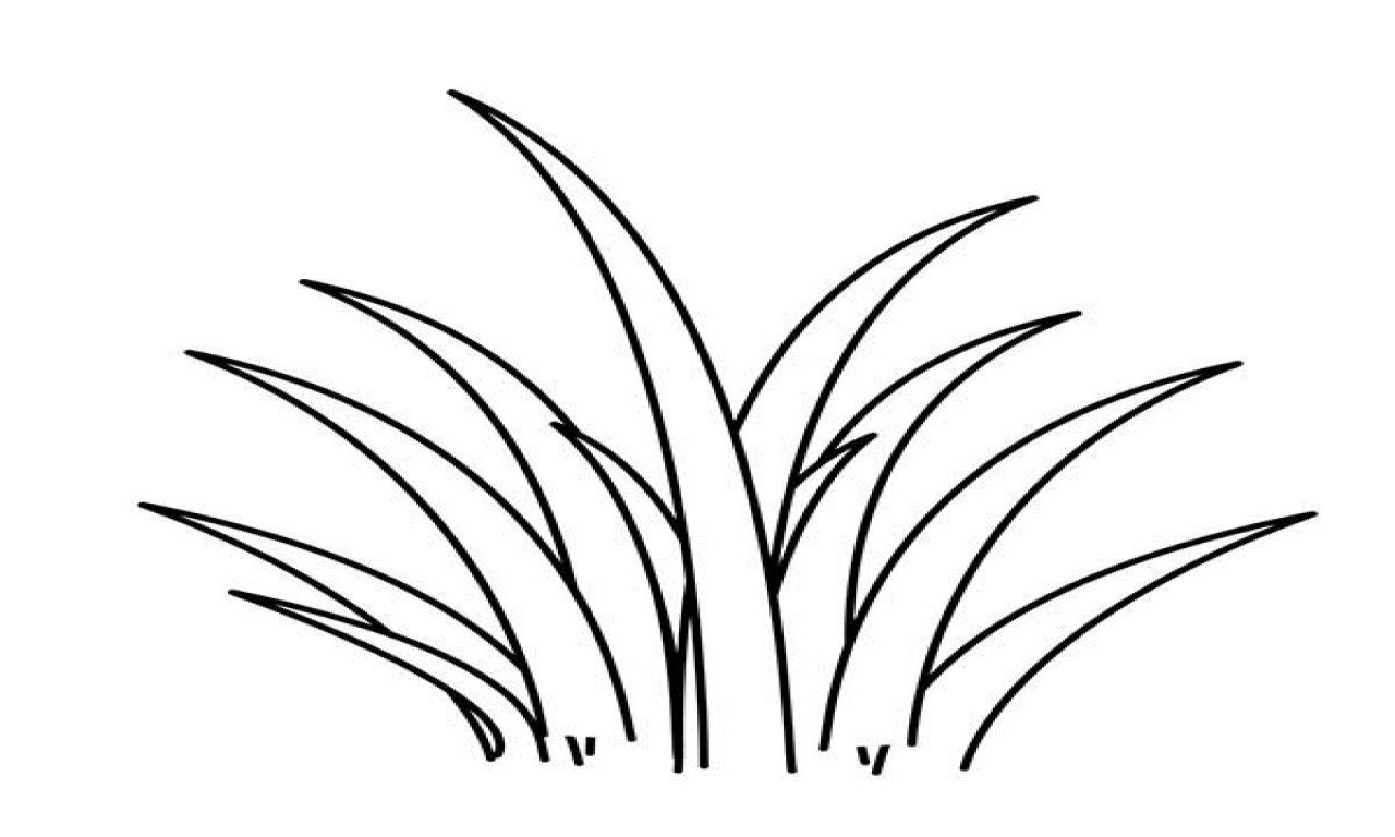 Line Drawing Grass : Grass line drawing at getdrawings free for personal