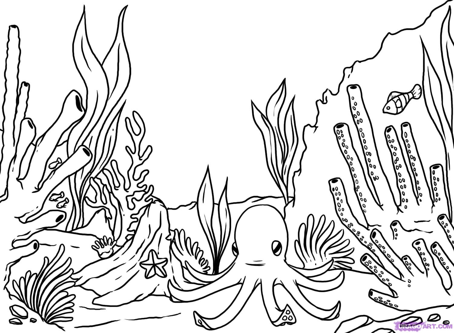 1500x1103 Coral Reef Line Drawing