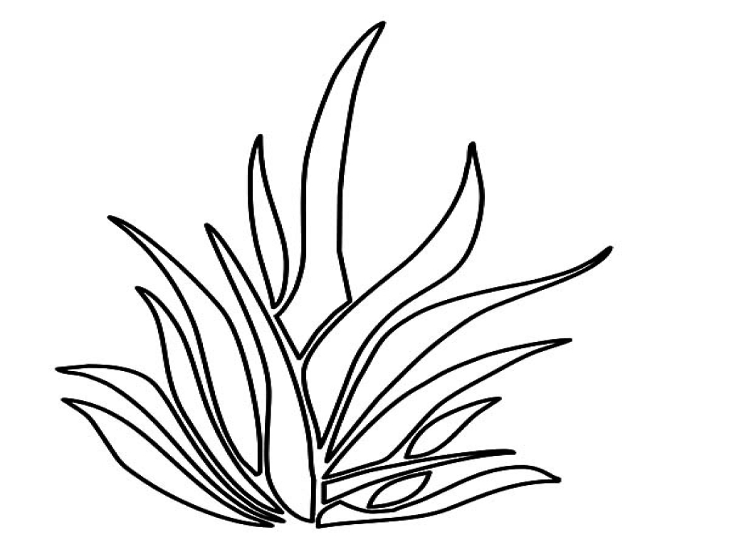 1024x768 Grass Clipart Coloring Page Pencil And In Color Pages