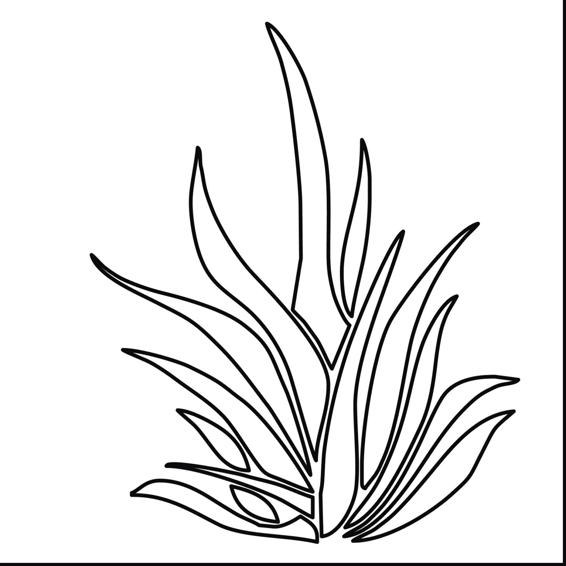 1819x1819 Grass Coloring Page Printable Coloring Pages