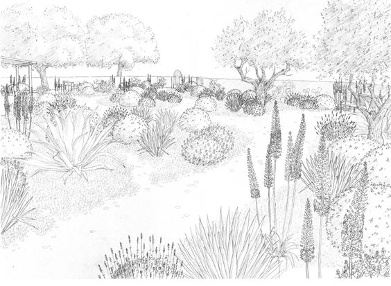564x413 Landscape Drawings Renate's Drawings Landscape