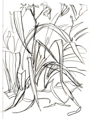 308x400 The Artist's Brain Art Lesson Gesture Drawings Of Plants