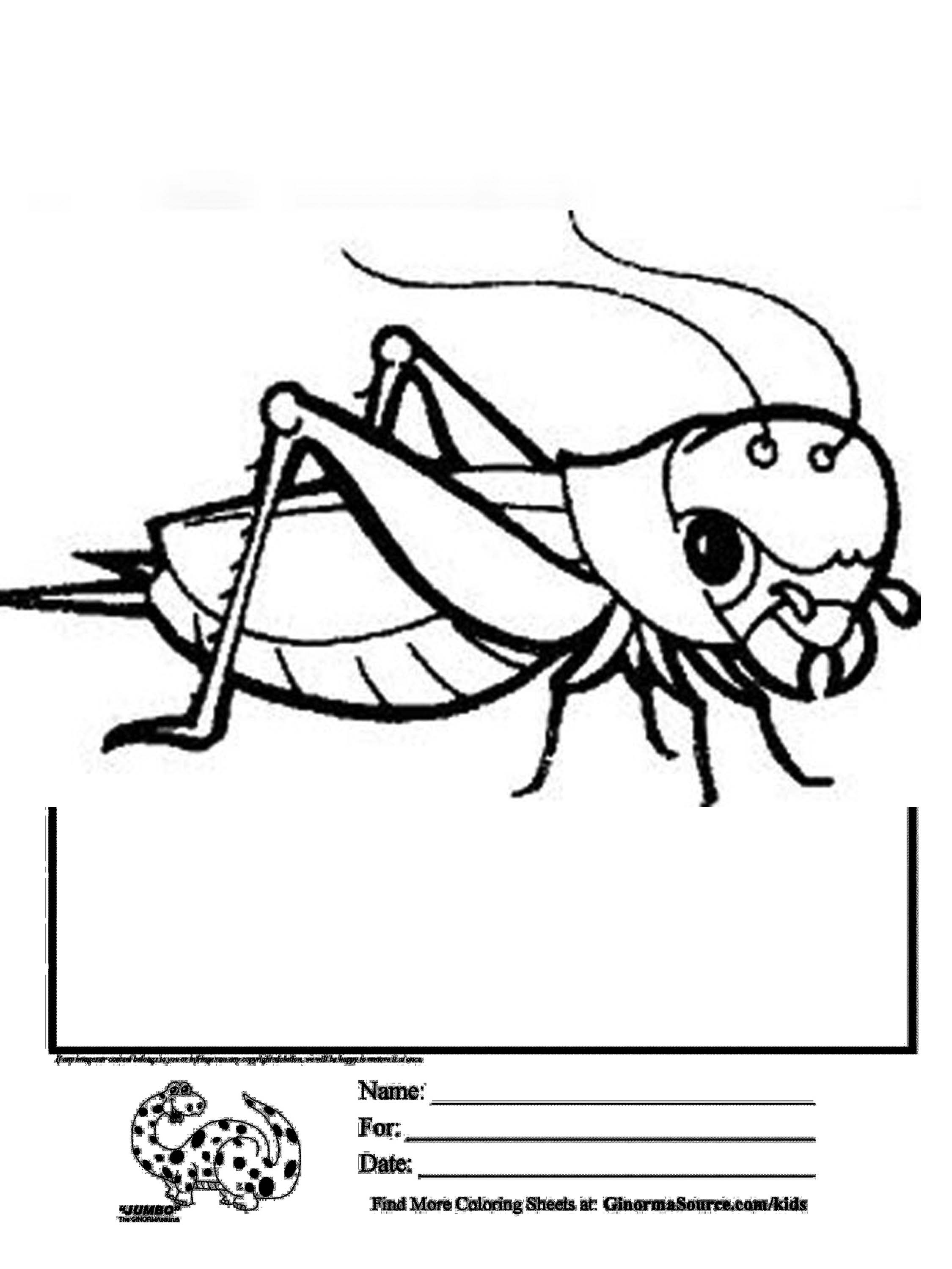 2250x3000 Coloring Page Grasshopper