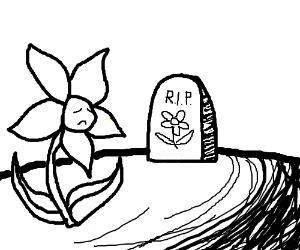 300x250 A Sad Memorial