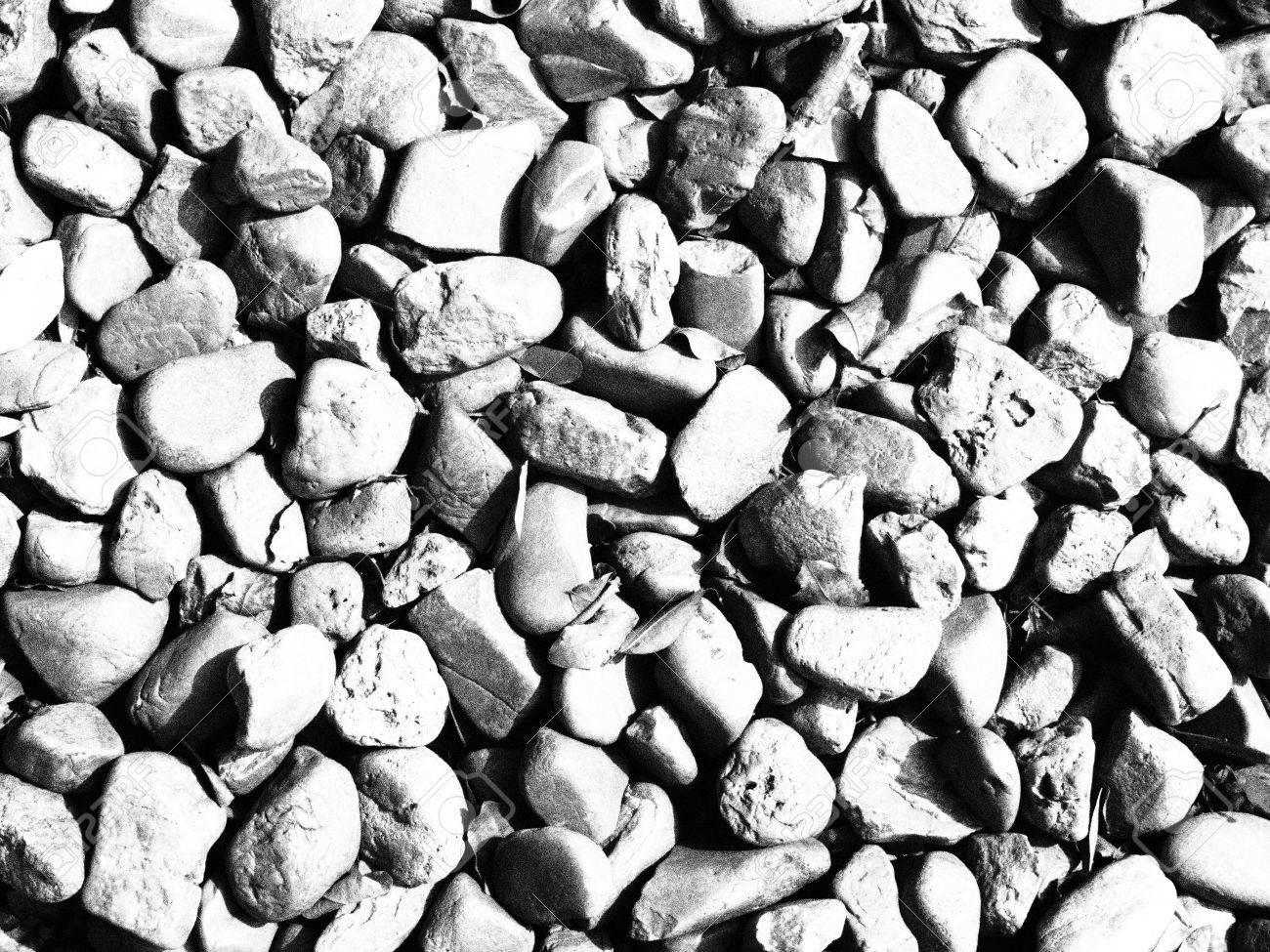 1300x975 Black And White Image Of Gravel Floor In Garden Stock Photo