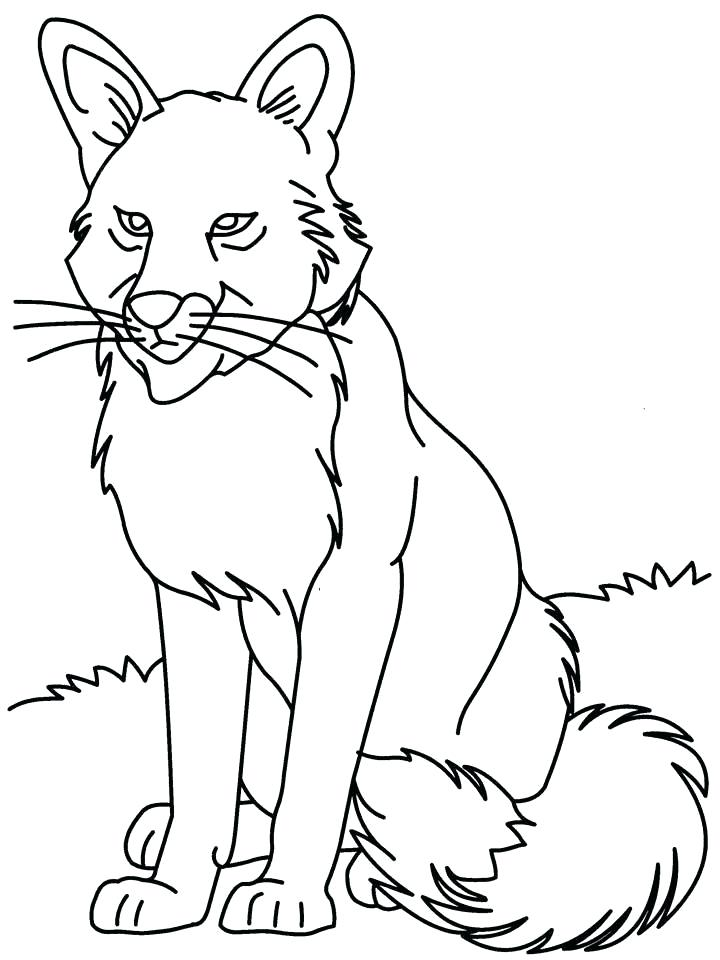 720x960 Gray Wolf Coloring Page Grey Wolf Coloring Pages Gray Wolf
