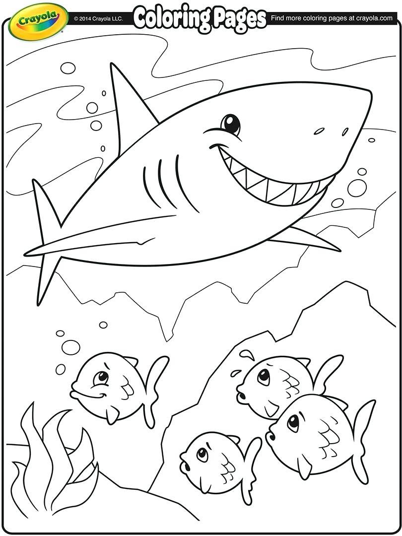 Great Hammerhead Shark Drawing at GetDrawings.com | Free for ...