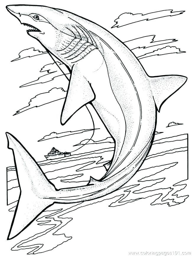 650x864 Shark Coloring Pages Printable Book In Addition To