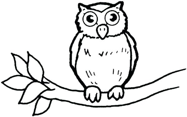 600x377 Great Horned Owl Coloring Page Image For Nature Great Horned Owl