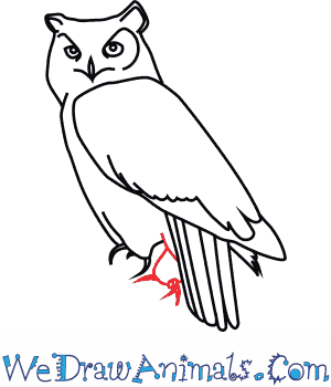 300x350 How To Draw A Great Horned Owl