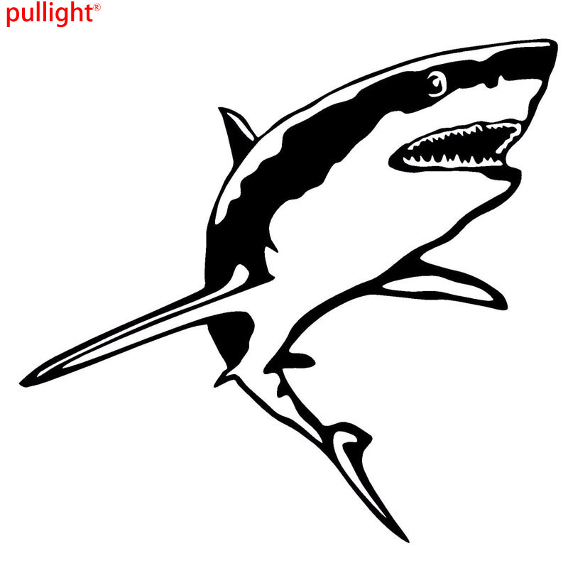 Great White Drawing