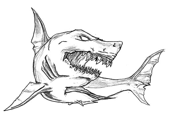 600x414 Shark Jaws Sketch Coloring Pages