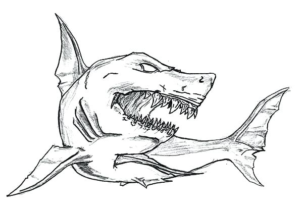 great white shark coloring page - great white shark drawing at free for