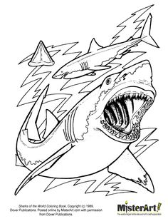 236x307 Great White Shark Clipart Kid