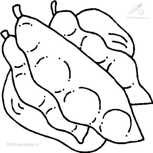 500x500 Bean Coloring Pages