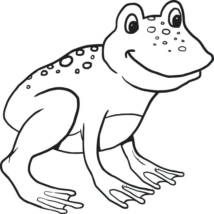 700x700 Frog Color Page Frog Coloring Page Green Tree Frog Coloring Page