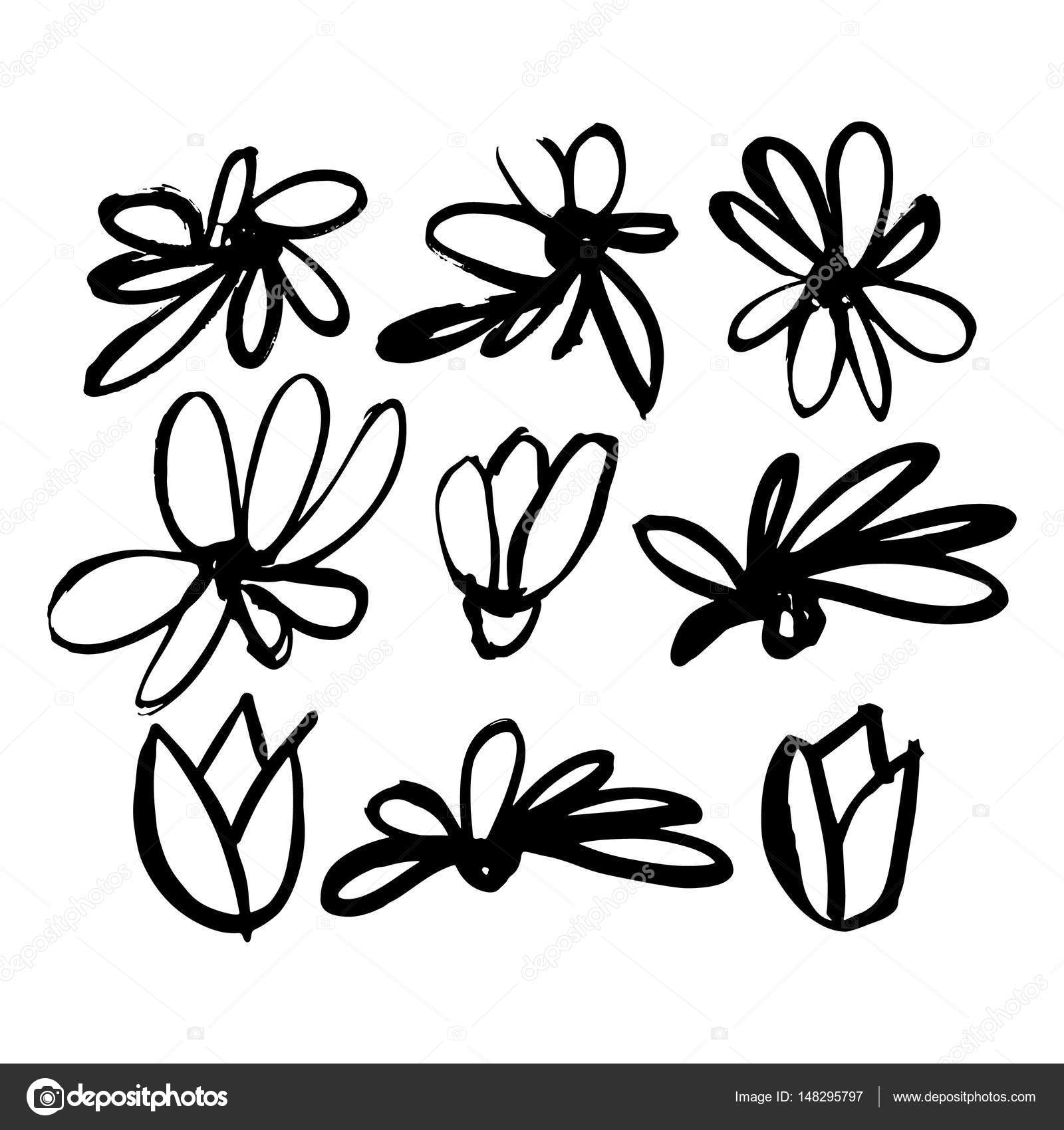 1600x1700 Hand Drawn Sketch Set From Flowers And Leaves. Illustration