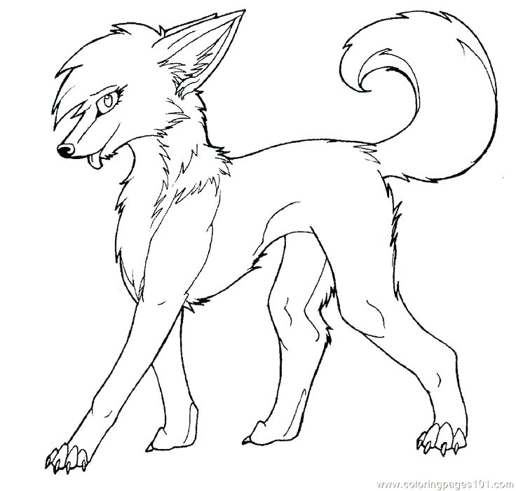 736x701 Where Wolf Coloring Page Lovely Grey Pages Kids