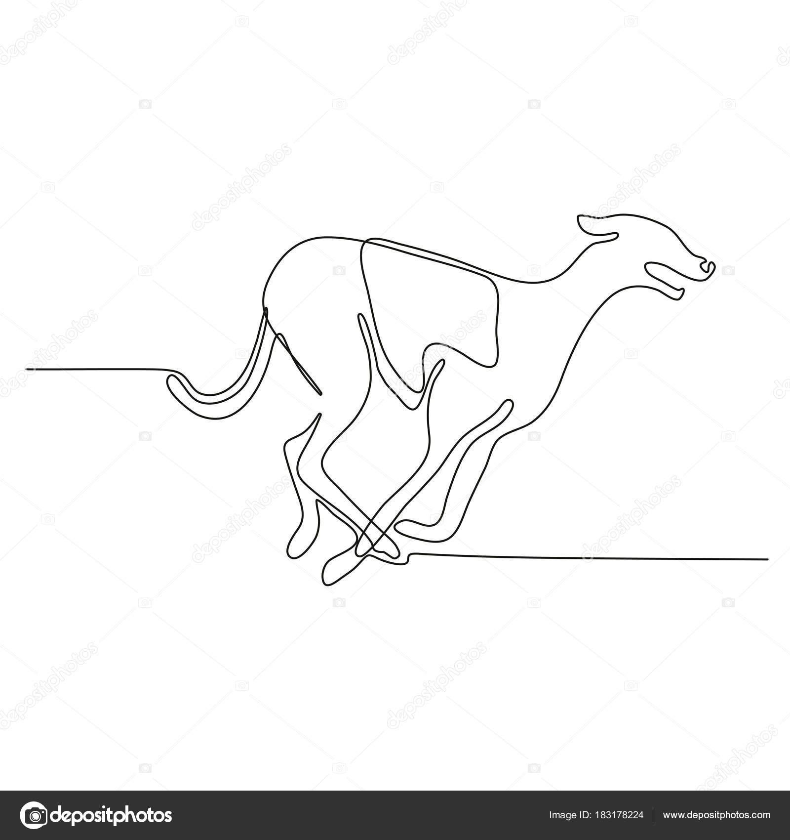 1600x1700 Greyhound Racing Continuous Line Stock Vector Patrimonio