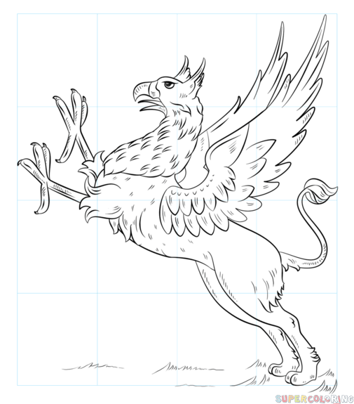 505x575 How To Draw A Griffin Step By Step Drawing Tutorials