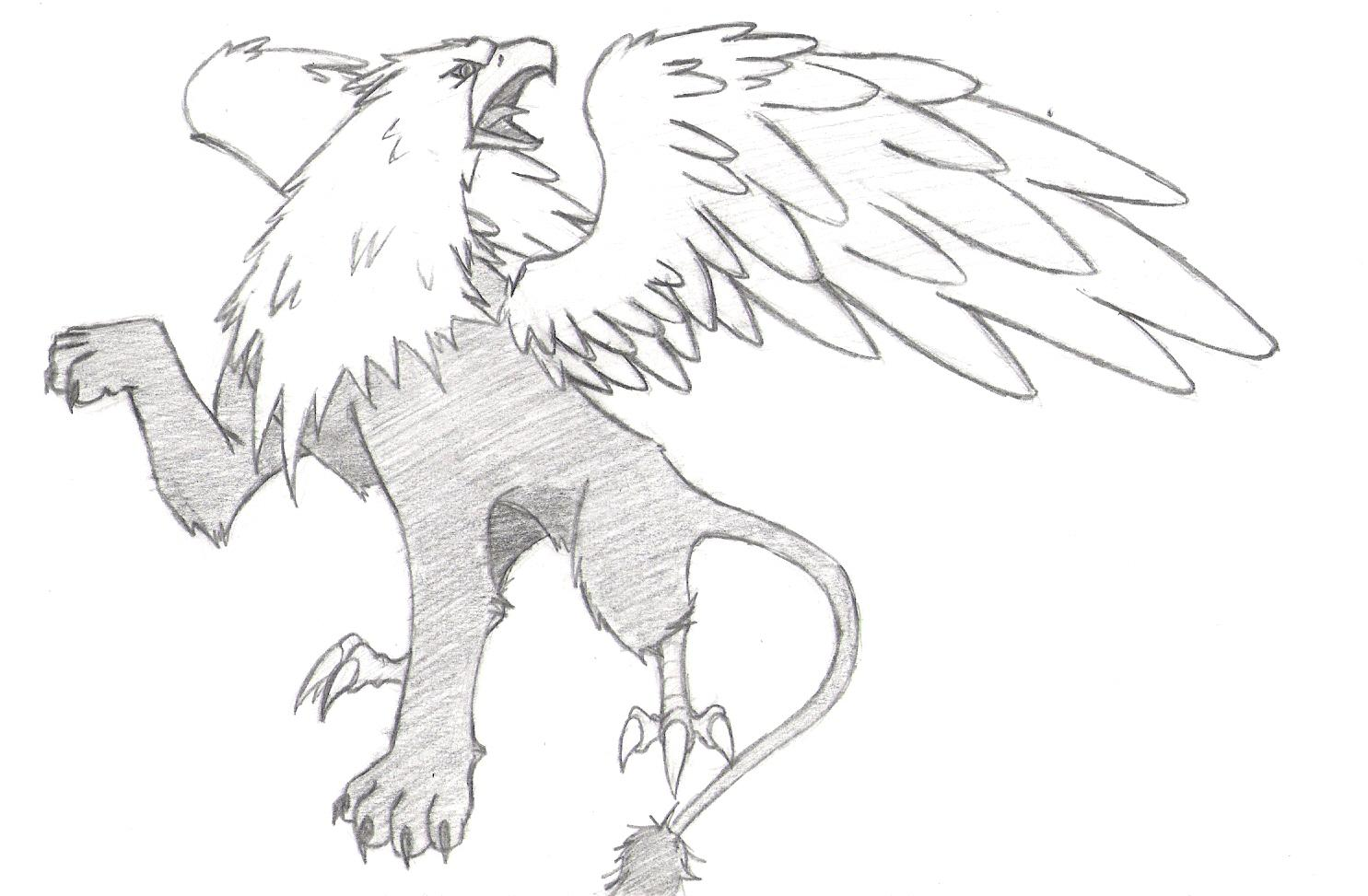 1485x973 Griffin Drawing