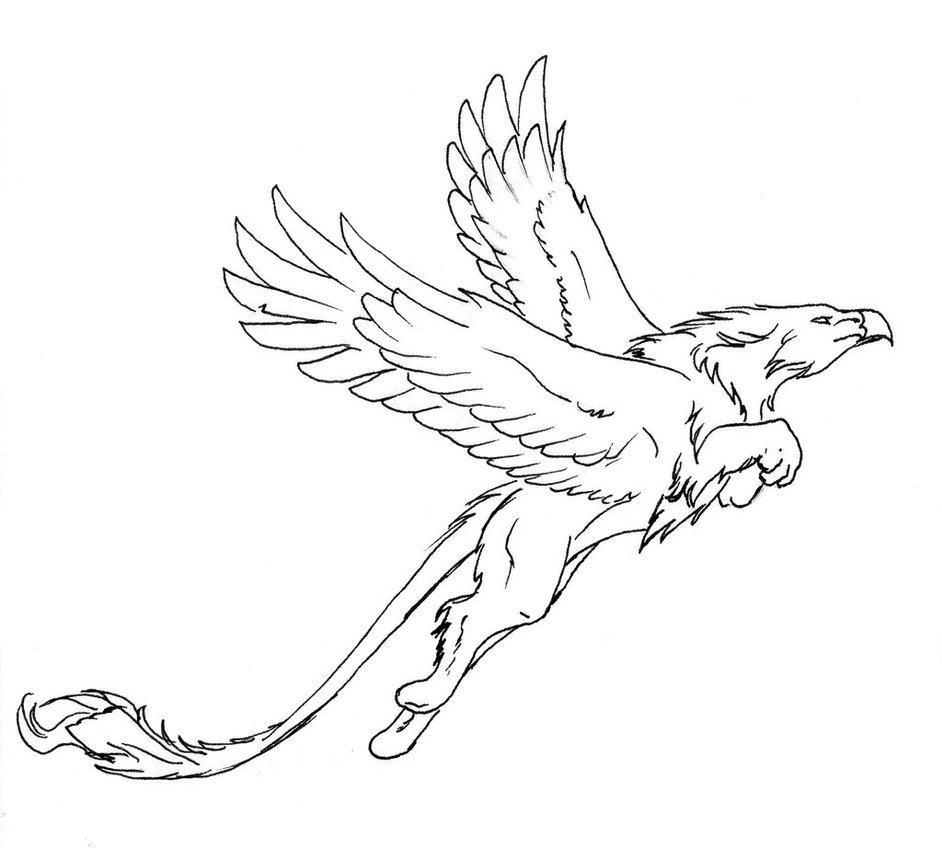 Griffon Drawing at GetDrawings | Free download