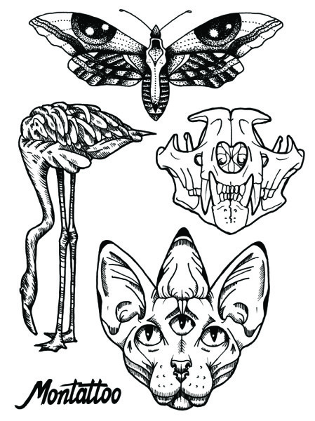 449x600 This Tattoo Set Includes A Butterfly, A Puma Skull, A Flamingo