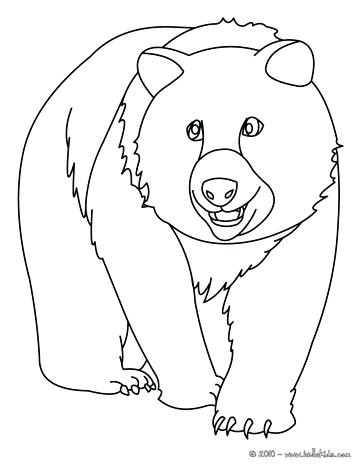 364x470 Grizzly Bear Coloring Pages As Well As Animals For Grizzly Bear