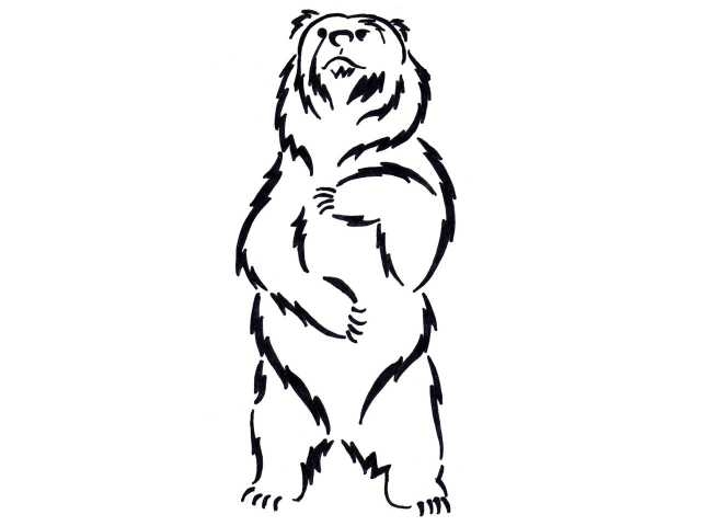 640x480 Small Drawn Grizzly Bear Standing Bear